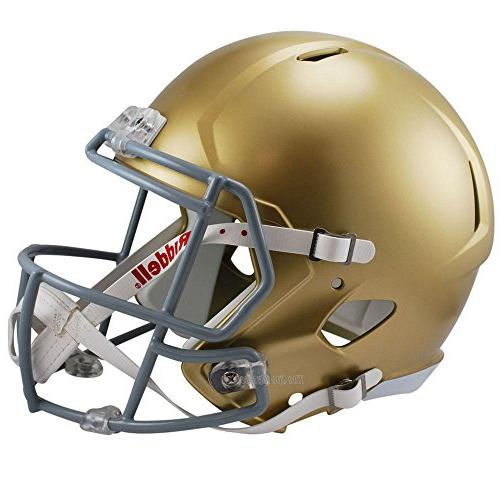 notre dame fighting irish officially