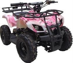 350 Watt Sonora Electric Ride on Mini Quad Utility ATV for K